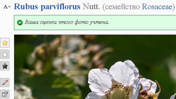 http://forum.plantarium.ru/misc.php?action=pun_attachment&item=11057&download=0