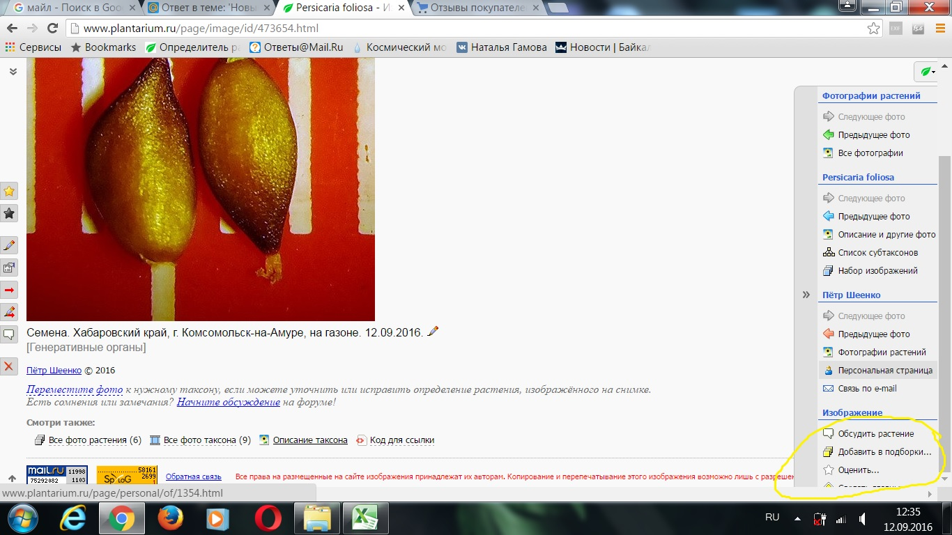 http://forum.plantarium.ru/misc.php?action=pun_attachment&item=11238&download=0