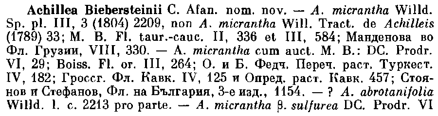 Achillea_biebersteinii_1a.png