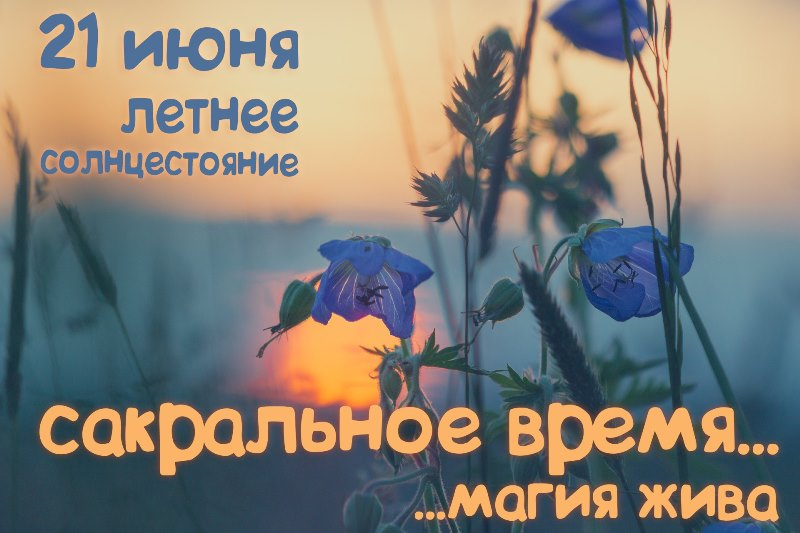 http://forum.plantarium.ru/misc.php?action=pun_attachment&item=15358&download=0