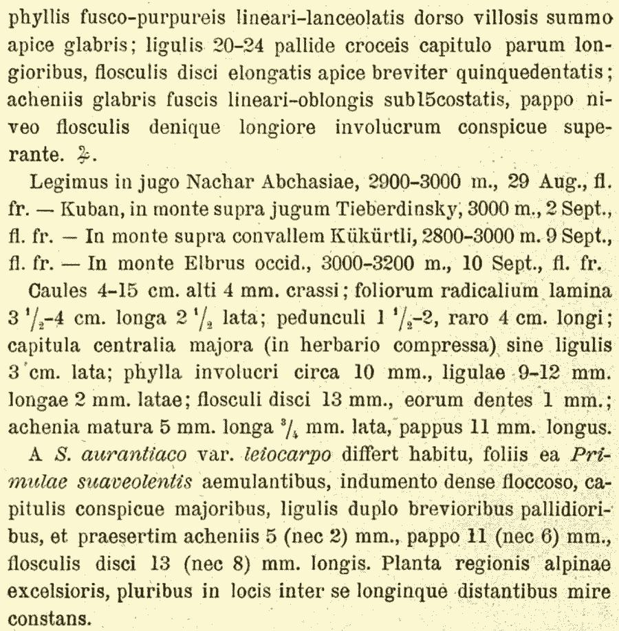 Senecio_primulifolius_2a.png