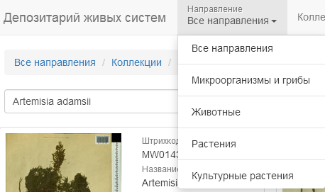 http://forum.plantarium.ru/misc.php?action=pun_attachment&item=16716&download=0