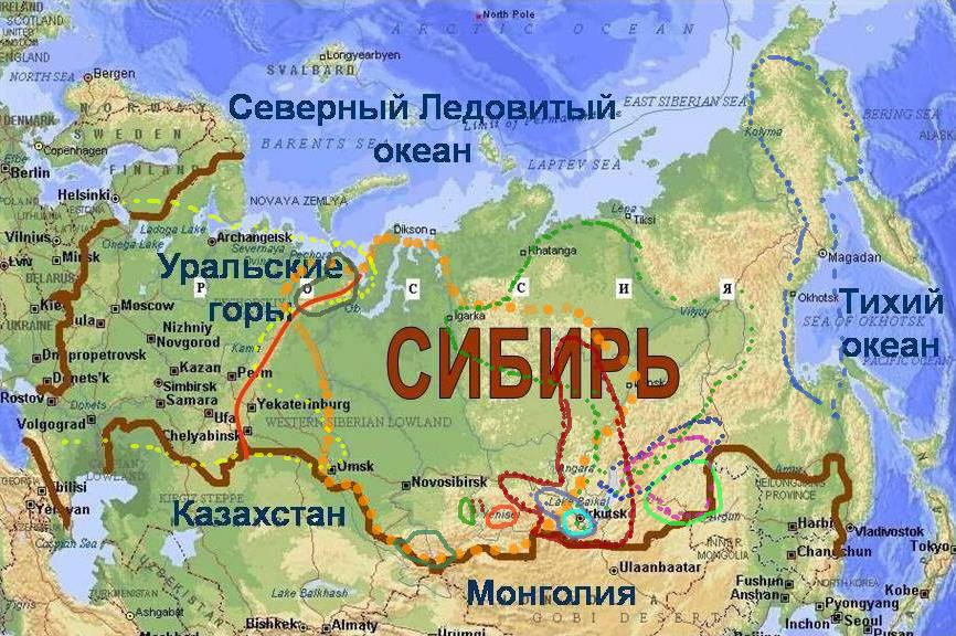 http://forum.plantarium.ru/misc.php?action=pun_attachment&item=22118&download=0