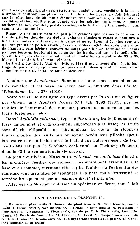 http://forum.plantarium.ru/misc.php?action=pun_attachment&item=24328