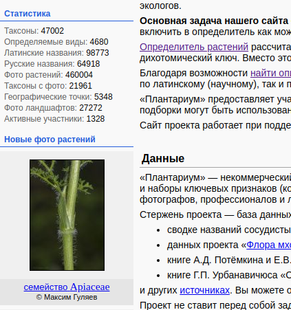 http://forum.plantarium.ru/misc.php?action=pun_attachment&item=25233&download=0