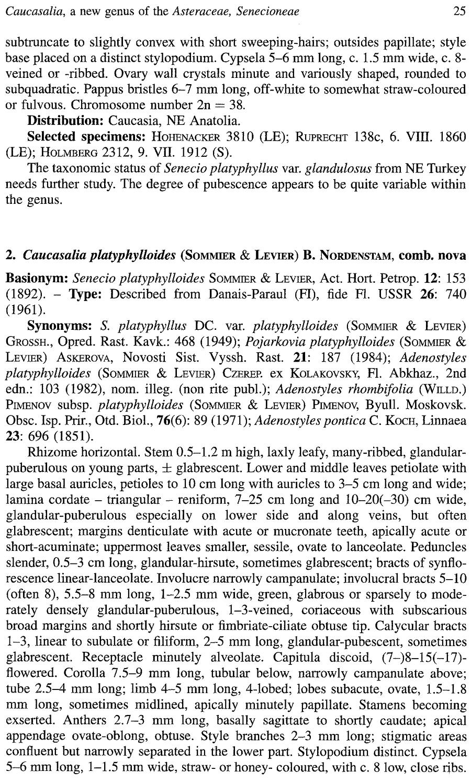 Caucasalia_platyphylloides_1a.png