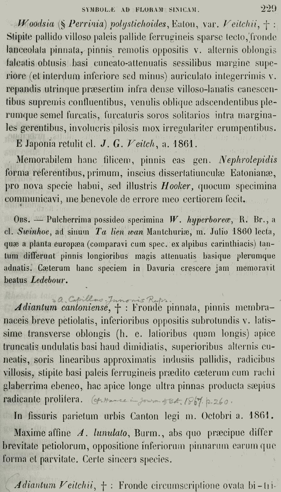 https://forum.plantarium.ru/misc.php?action=pun_attachment&item=26235