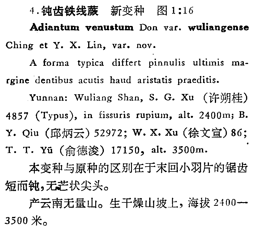 https://forum.plantarium.ru/misc.php?action=pun_attachment&item=26251