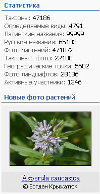 https://forum.plantarium.ru/misc.php?action=pun_attachment&item=26399&download=0
