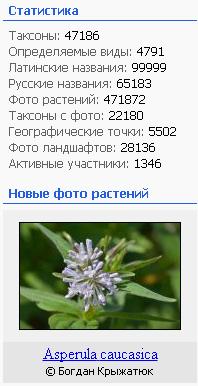 https://forum.plantarium.ru/misc.php?action=pun_attachment&item=26399&download=0
