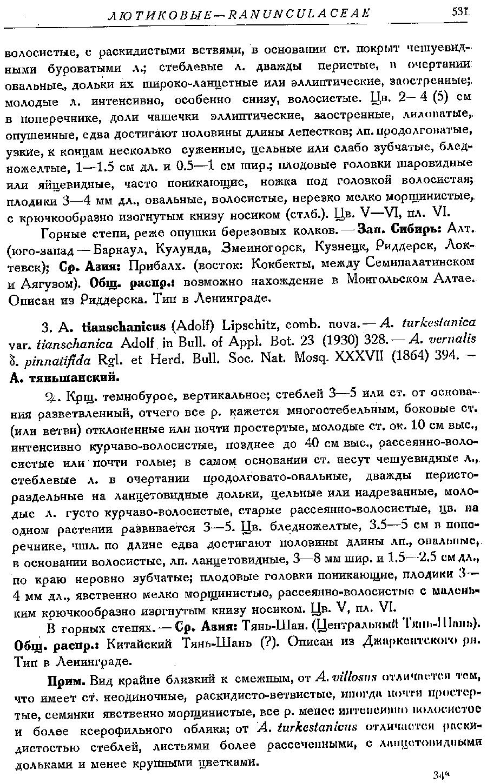 https://forum.plantarium.ru/misc.php?action=pun_attachment&item=26582