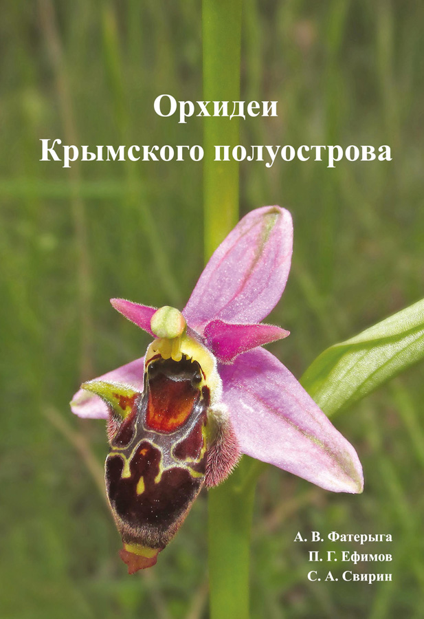 https://forum.plantarium.ru/misc.php?action=pun_attachment&item=26657&download=0