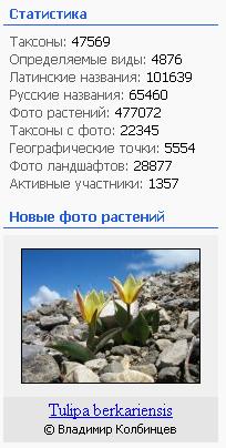 https://forum.plantarium.ru/misc.php?action=pun_attachment&item=26997&download=0