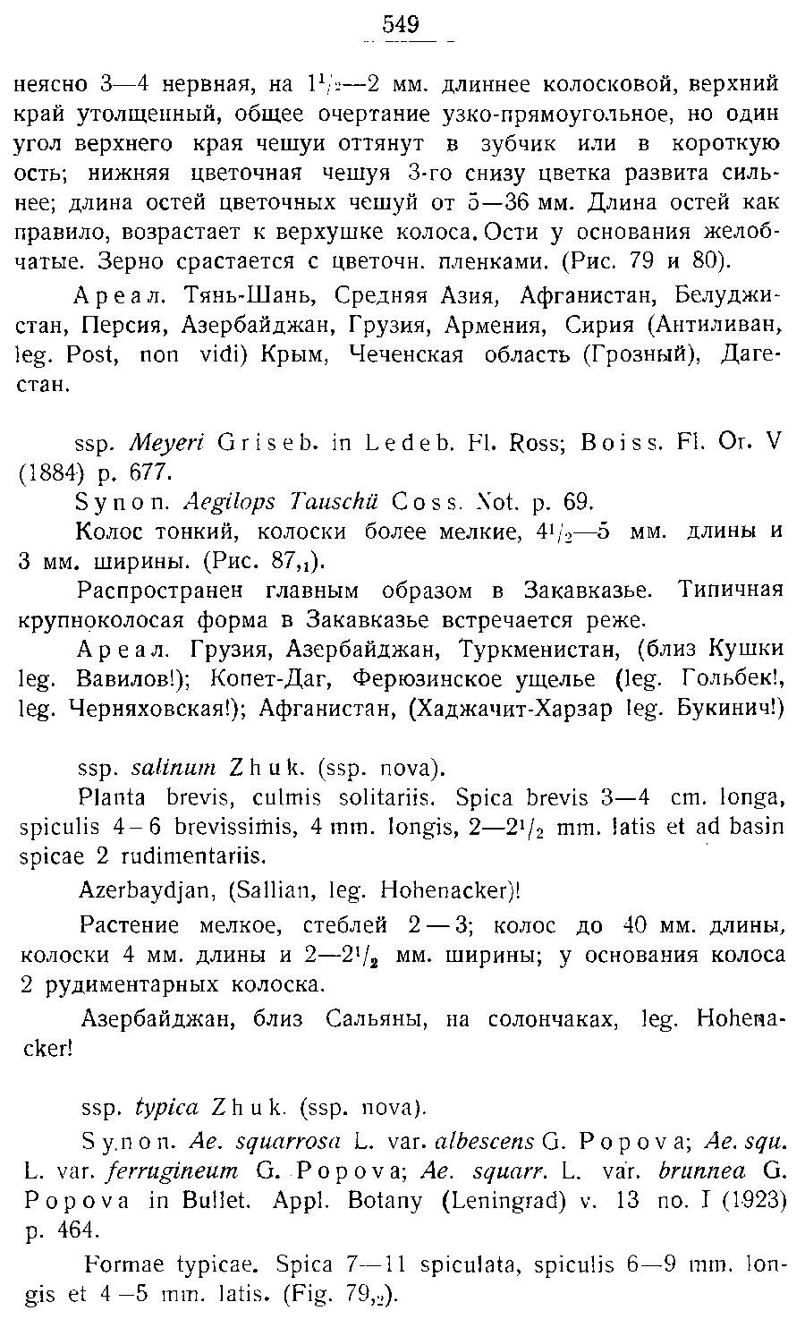 https://forum.plantarium.ru/misc.php?action=pun_attachment&item=27162