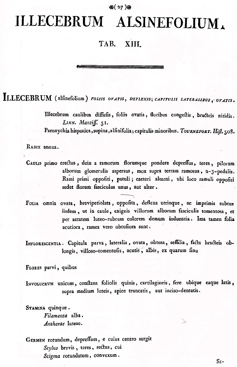 https://forum.plantarium.ru/misc.php?action=pun_attachment&item=27431