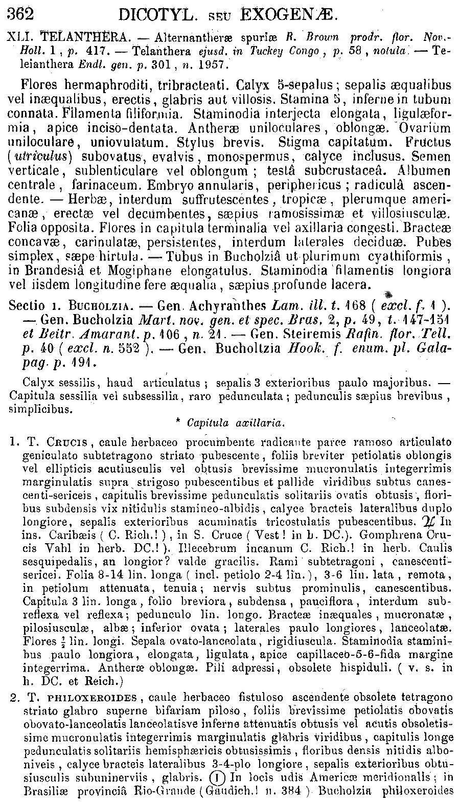 https://forum.plantarium.ru/misc.php?action=pun_attachment&item=27439