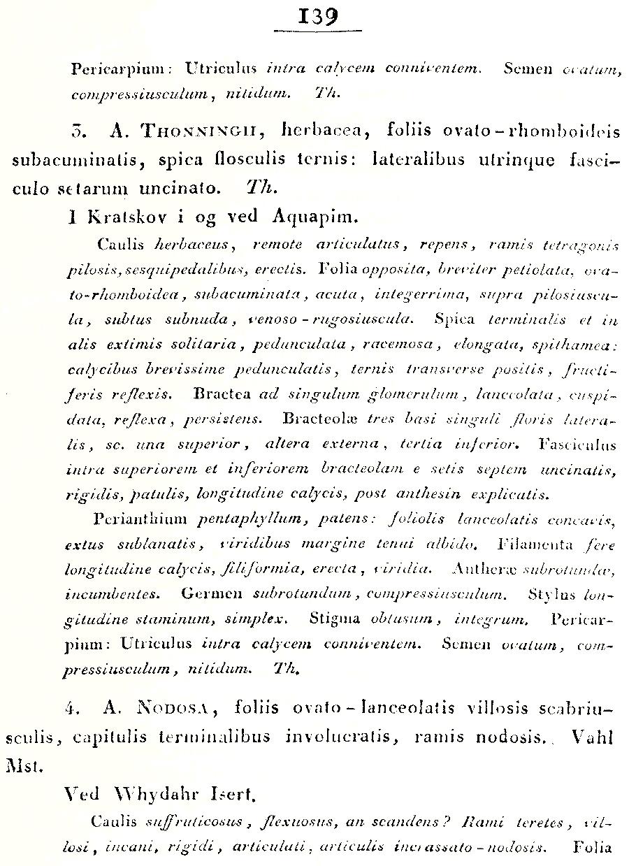 https://forum.plantarium.ru/misc.php?action=pun_attachment&item=28457