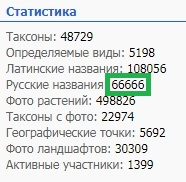 https://forum.plantarium.ru/misc.php?action=pun_attachment&item=28718&download=0