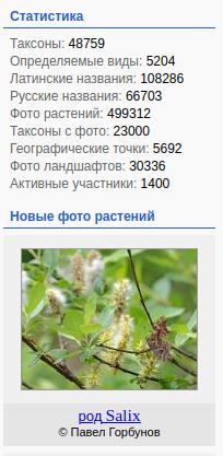 https://forum.plantarium.ru/misc.php?action=pun_attachment&item=28747&download=0