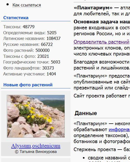 https://forum.plantarium.ru/misc.php?action=pun_attachment&item=28787&download=0