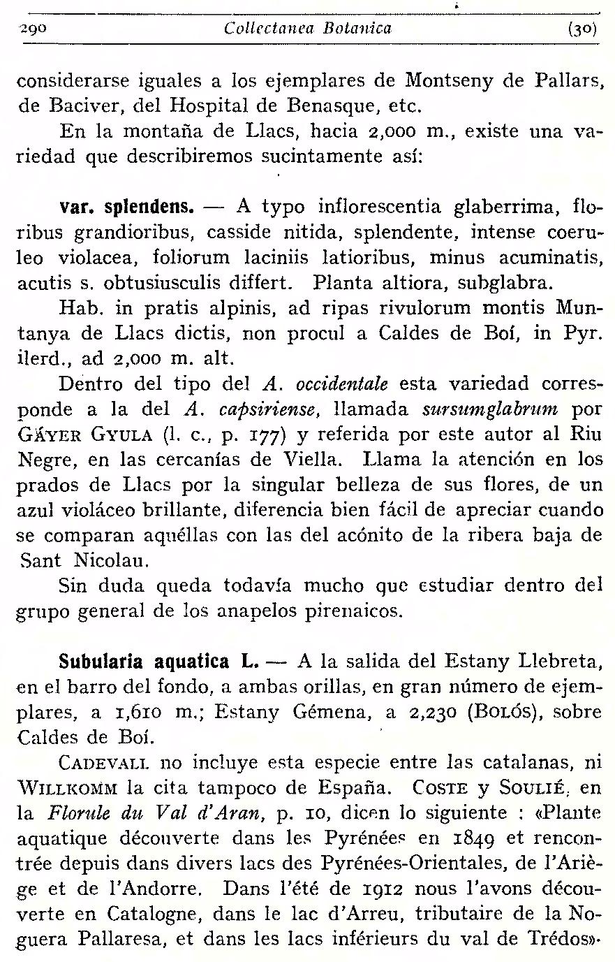 https://forum.plantarium.ru/misc.php?action=pun_attachment&item=29469