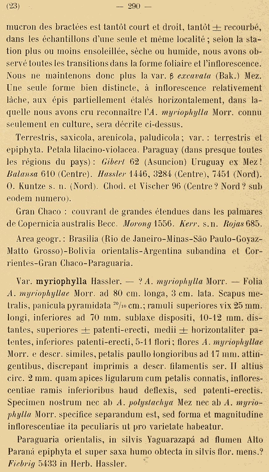 https://forum.plantarium.ru/misc.php?action=pun_attachment&item=29865
