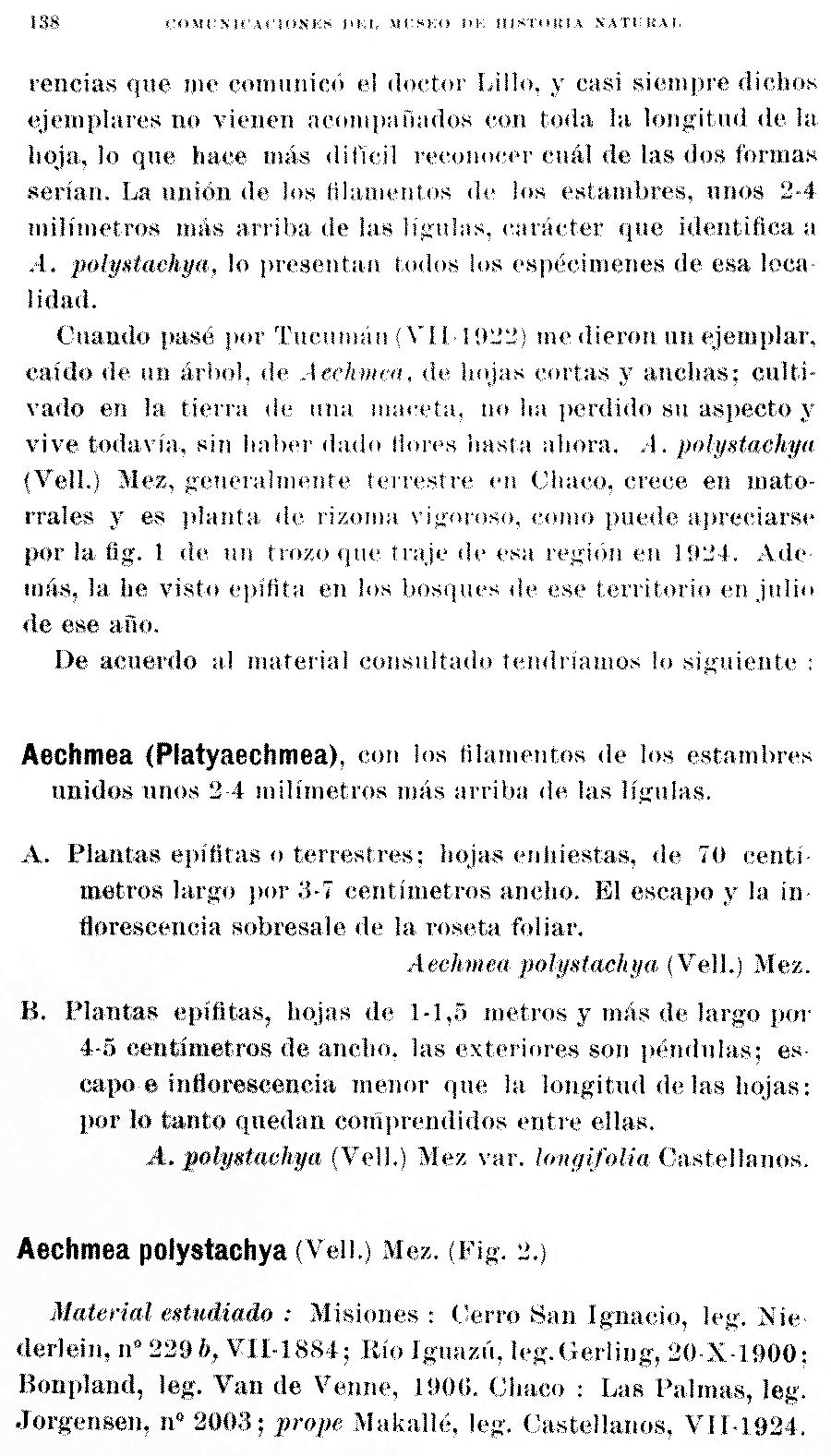 https://forum.plantarium.ru/misc.php?action=pun_attachment&item=29870