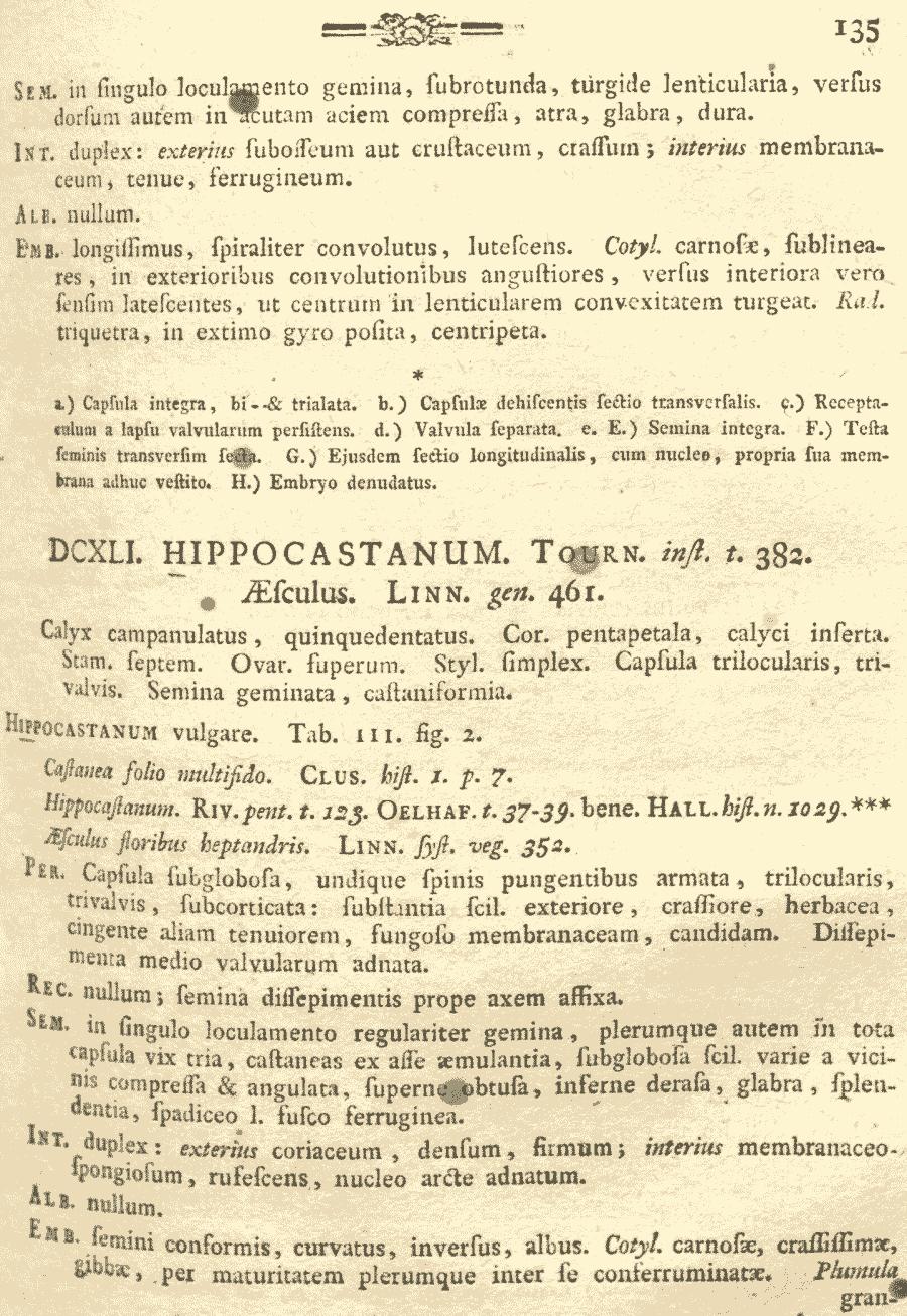 Hippocastanum_vulgare_1a.png