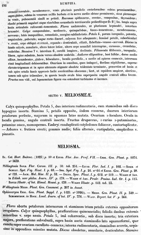 https://forum.plantarium.ru/misc.php?action=pun_attachment&item=30396