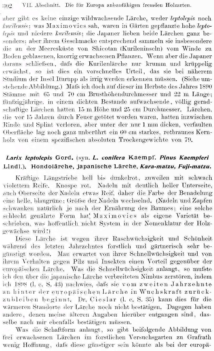 https://forum.plantarium.ru/misc.php?action=pun_attachment&item=30416
