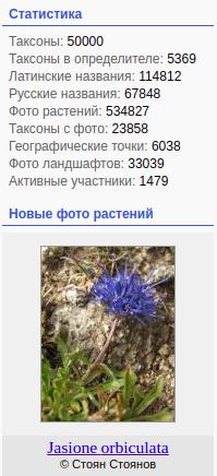 https://forum.plantarium.ru/misc.php?action=pun_attachment&item=30729&download=0