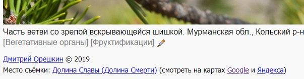 https://forum.plantarium.ru/misc.php?action=pun_attachment&item=30742&download=0