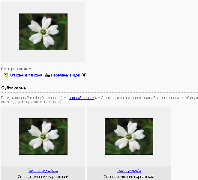 http://forum.plantarium.ru/misc.php?action=pun_attachment&item=5154&download=0
