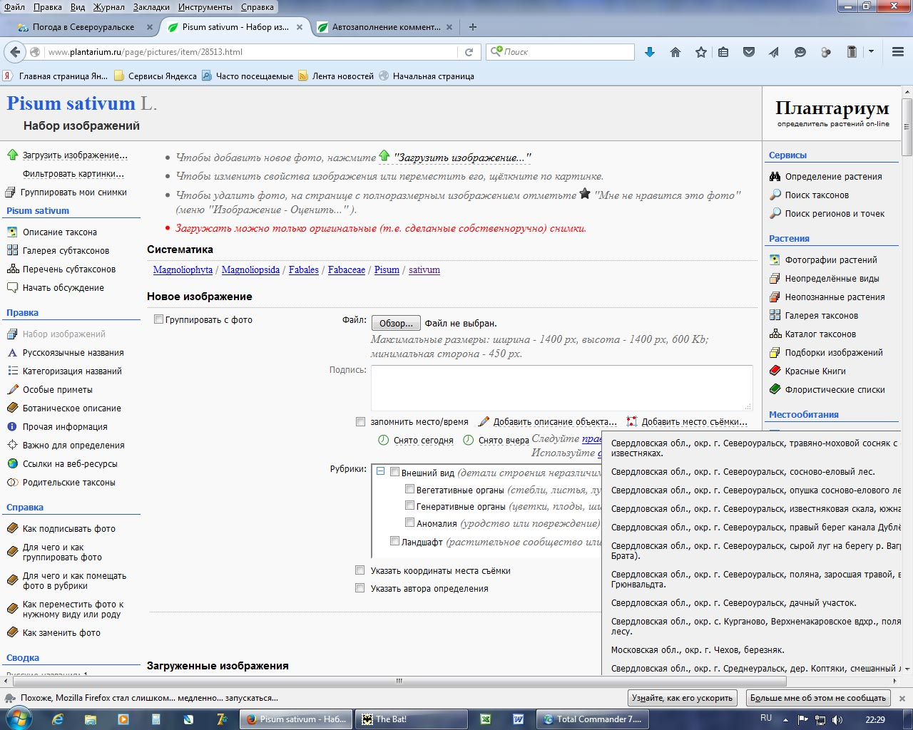 http://forum.plantarium.ru/misc.php?action=pun_attachment&item=8349&download=0