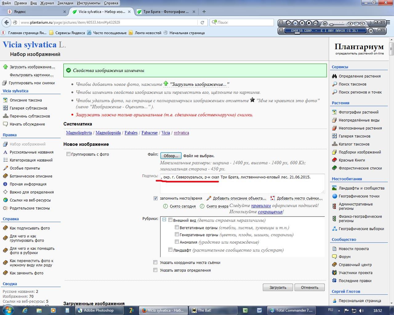 http://forum.plantarium.ru/misc.php?action=pun_attachment&item=8356&download=0